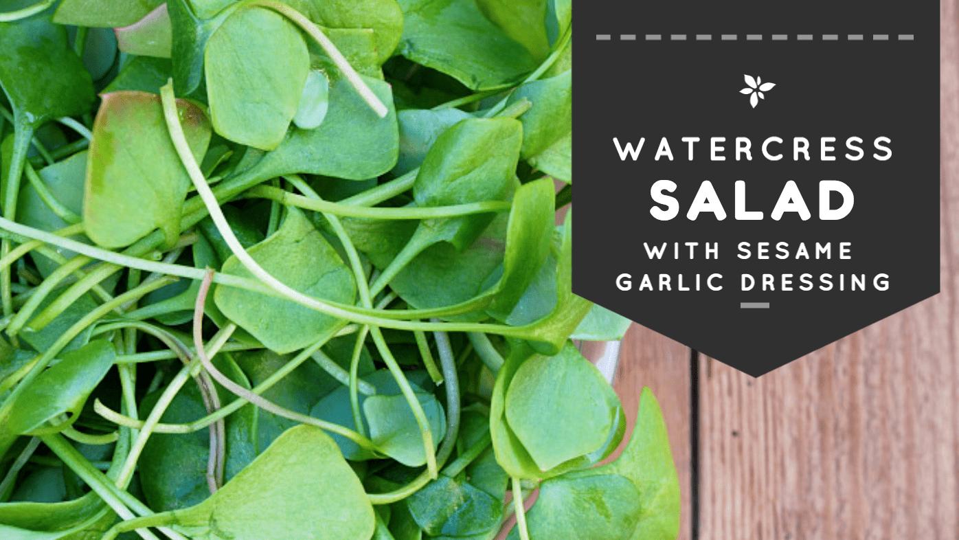 Watercress Salad with Sesame Garlic Dressing