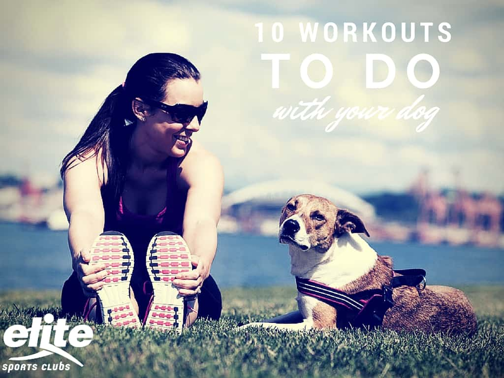10 Workouts To Do With Your Dog