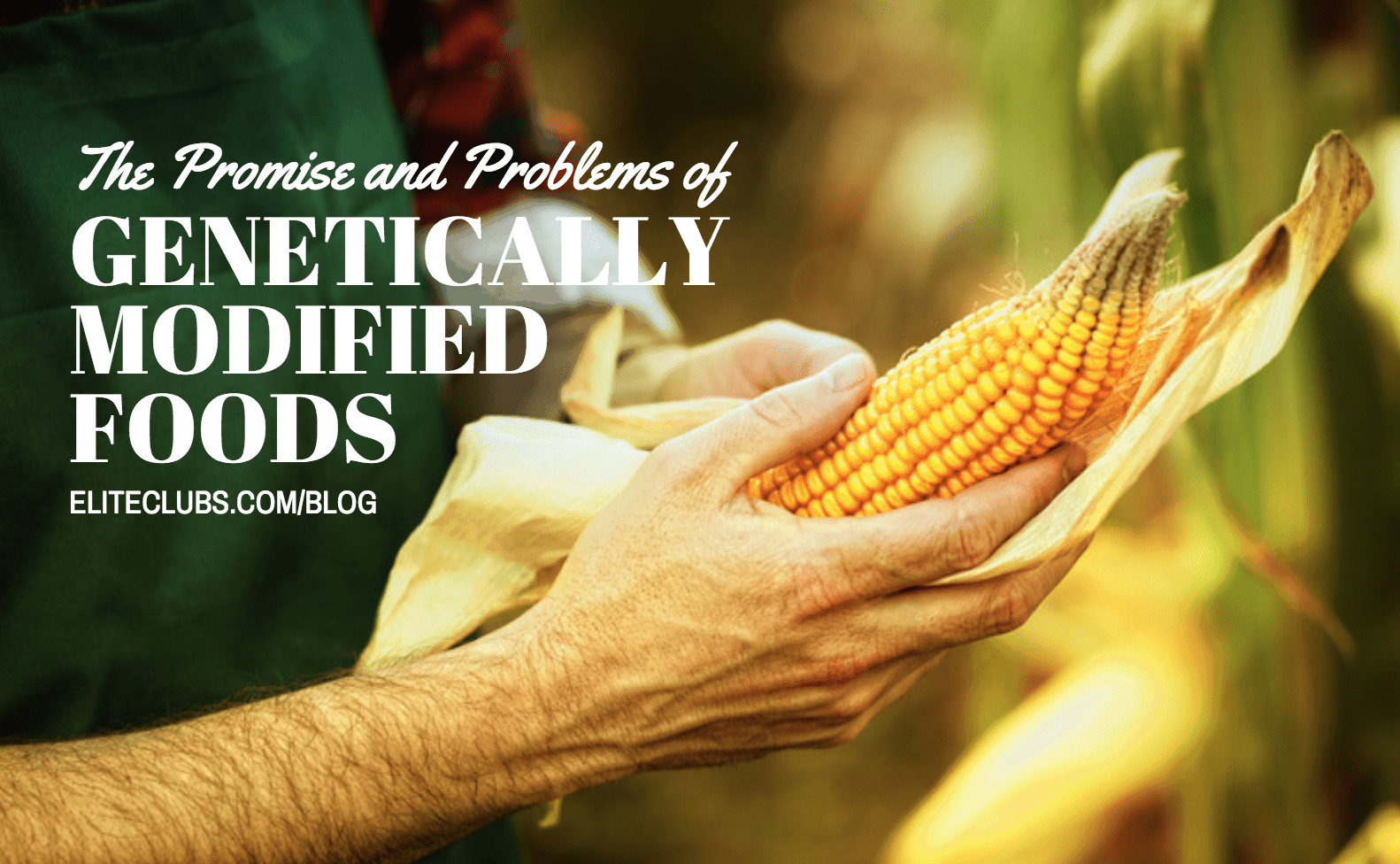 Promise and Problems of Genetically Modified Foods