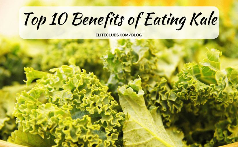 Top 10 Benefits of Eating Kale