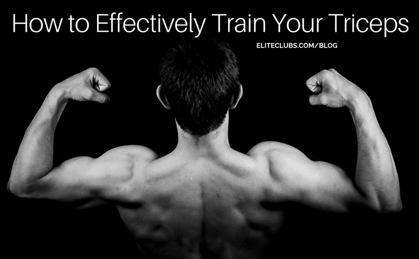 How to Effectively Train Your Triceps