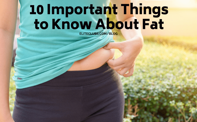 10 Important Things to Know About Fat