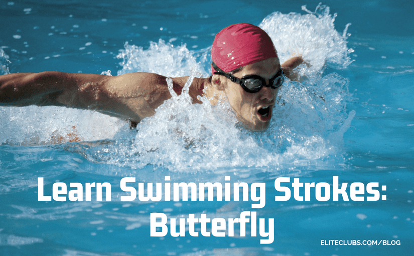 Learn Swimming Strokes - Butterfly