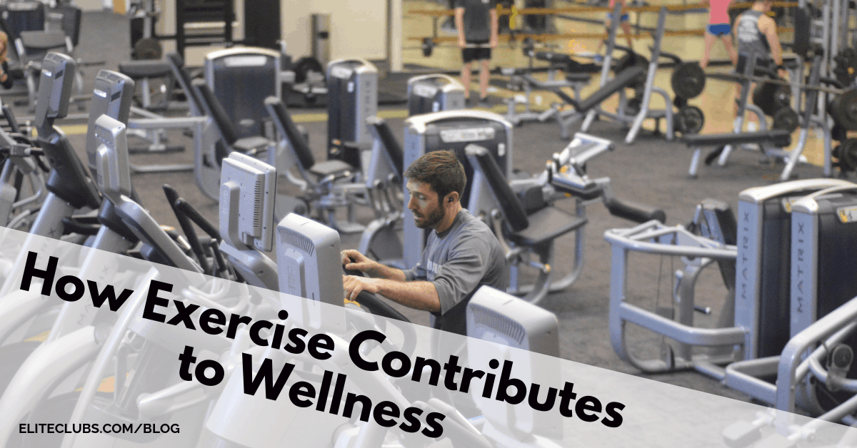 How Exercise Contributes to Wellness