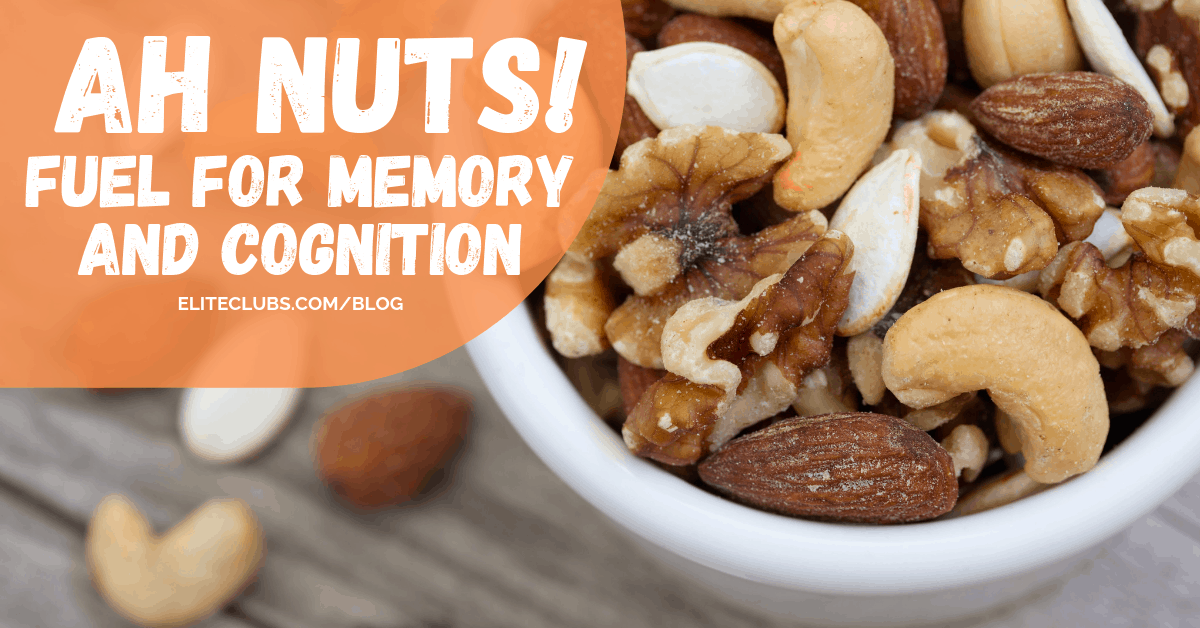 Ah Nuts! Fuel for Memory and Cognition